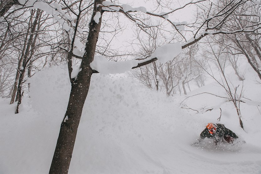 They call it Japow.