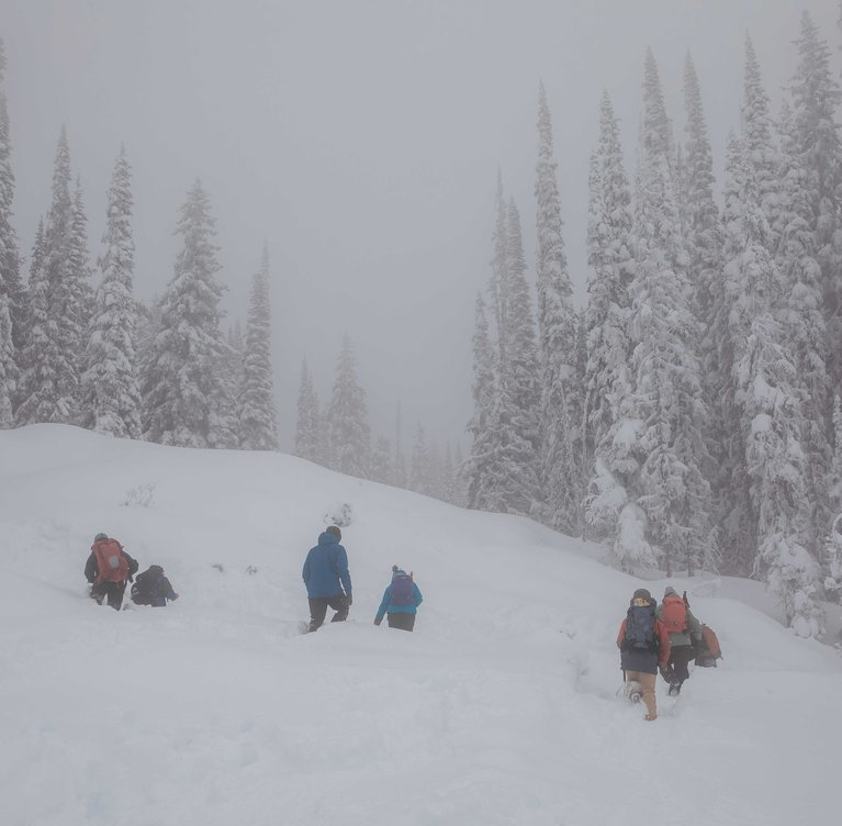 Why You Should Take an Avalanche Safety Course - Group Rescue Practice