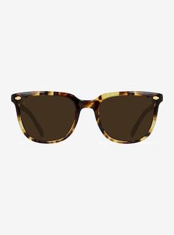 d54d838457 RAEN Arlo Sunglasses shown in Tokyo Tortoise   Bronze Polarized