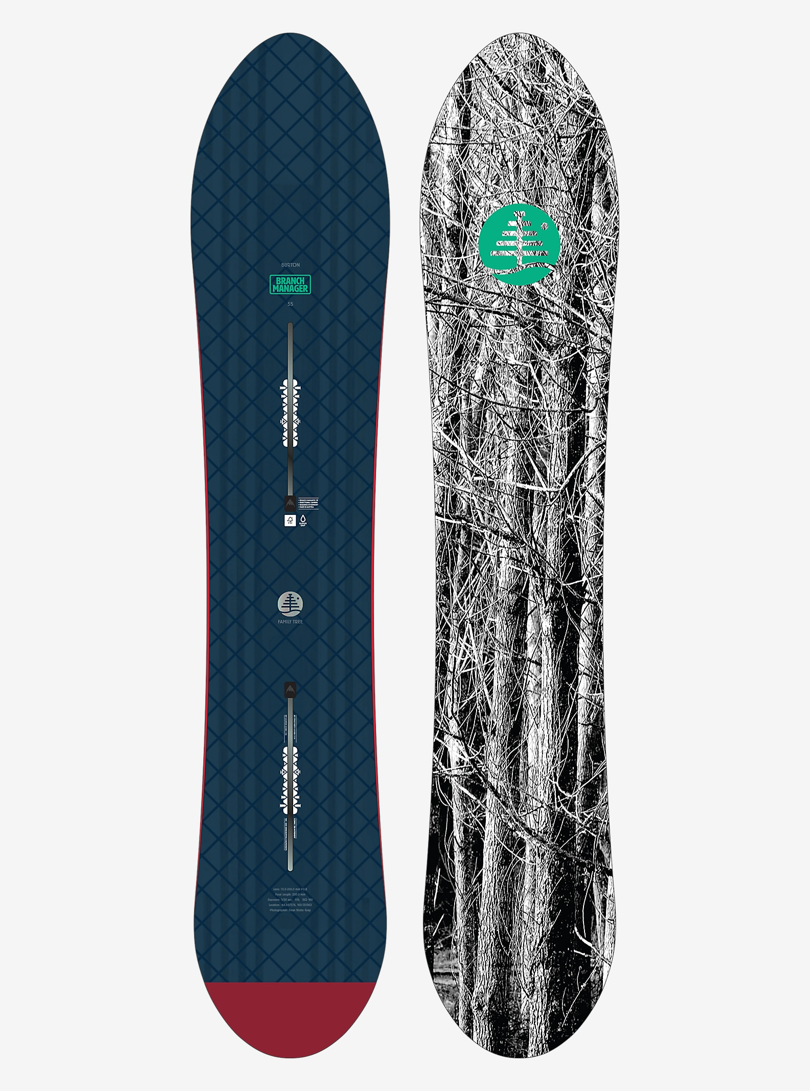 Burton Family Tree Branch Manager Snowboard shown in 155